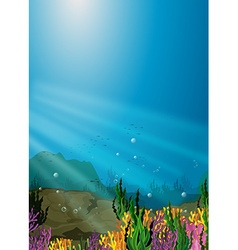 Nature scene under sea with coral reef vector