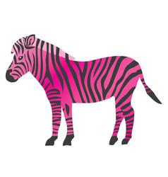 pink zebra vector image