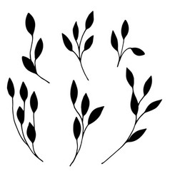 Set ornamental leaves twigs in doodle style vector