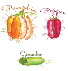watercolor blots set of vegetables vector image