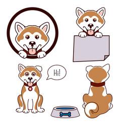akita dog icon vector image vector image
