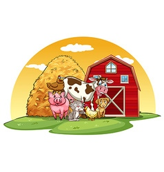 Animals farm vector image