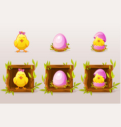 cartoon isolated pink eggs and chicken in square vector image