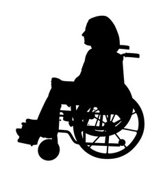 disabled person in wheelchair vector image