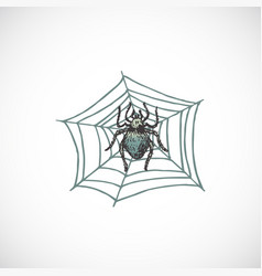 hand drawn colorful halloween scary spider on the vector image