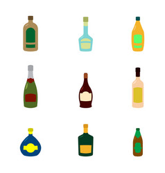 icon set with alcohol bottles vector image