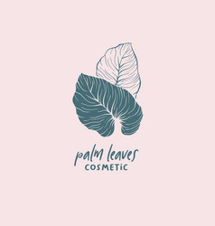 Palm leaves cosmetic logotype template vector