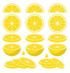 Set of fresh lemon slices vector