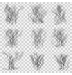 set translucent gray smoke vector image
