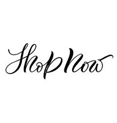 shop now lettering vector image