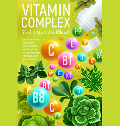 Vitamin and mineral in veggies and herb vector