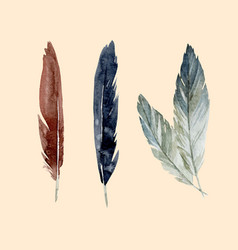 watercolor feathers set vector image