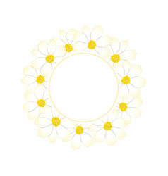 white cosmos flower banner wreath vector image