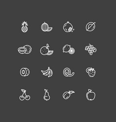 white fruits thin line icons set vector image
