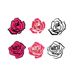A set of roses of different shapes vector