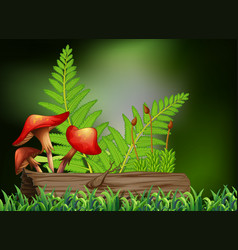 background scene with mushroom and log vector image vector image