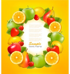 fresh fruit in frame vector image vector image