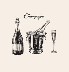 champagne glass bottle bucket hand drawing vector image