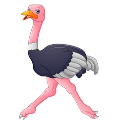 Cute ostrich cartoon vector
