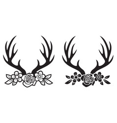 deer horns or antlers with flowers vector image