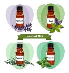 Essential oils set 2 vector