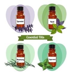 essential oils set 2 vector image
