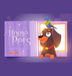 home pets banner with cute dog and parrot vector image