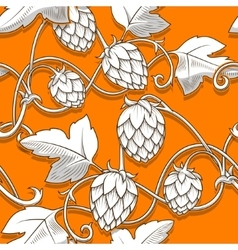 Hops ornament vector image