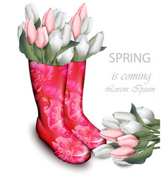 pink tulip flowers boots spring background with vector image
