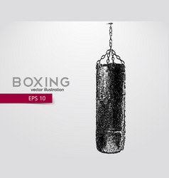 Punching bag from particles vector