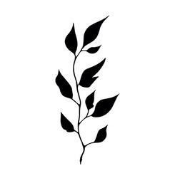 Stylized natural silhouette of autumn leaf vector
