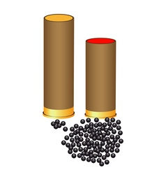 hunting cartridges vector image