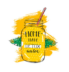 hand drawn abstract creative detox water vector image vector image