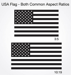 Accurate correct black and white usa flags 2 sizes vector