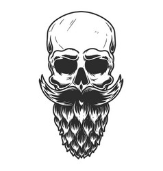 Human skull with beard made from beer hop vector