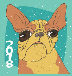 Ridiculous portrait of breed french bulldog vector