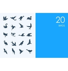 Set of blue hamster library birds icons vector
