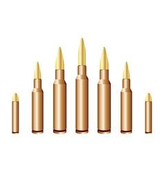 Caliber bullets vector