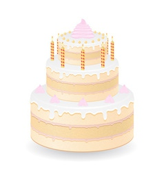 cake 06 vector image vector image