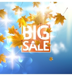 Autumn Sale poster with gold Maple leaves vector image