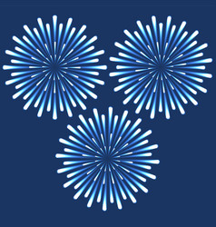 fireworks with beskami and highlights vector image