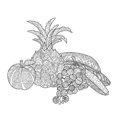 Fruits coloring book for adults vector image