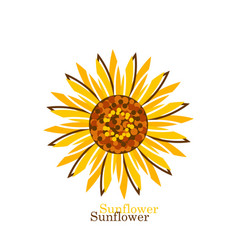 sunflower on white background in flat style vector image