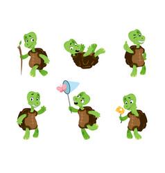 Turtle cartoon tortoise mascot green comic vector
