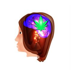 Useful properties of cannabis cannabis treatment vector