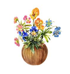 watercolor pansies in a brown pot vector image