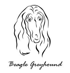 Beagle greyhound vector