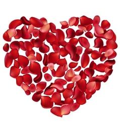 heart made petals vector image vector image