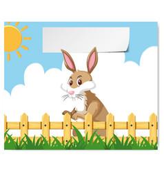 a bunny at farm banner vector image