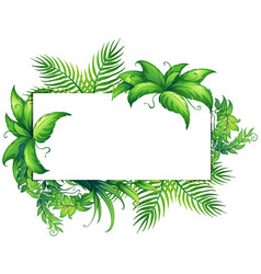 border template with green leaves vector image